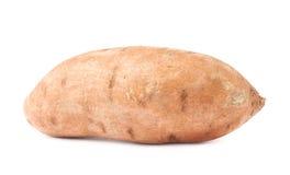 Usine de patate douce d'isolement Images stock