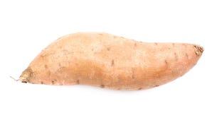 Usine de patate douce d'isolement Photos libres de droits