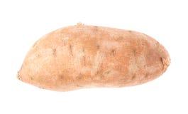 Usine de patate douce d'isolement Image stock