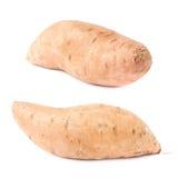 Usine de patate douce d'isolement Photographie stock