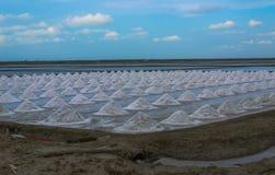 Usine de sel en Thaïlande Photographie stock libre de droits