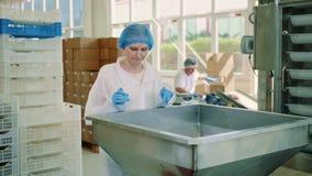 Usine de sucrerie Ouvrier vérifiant la machine à emballer clips vidéos