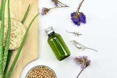Usine de Vera d'aloès, produit de beauté naturel de soins de la peau Récipients cosmétiques de bouteille avec les feuilles de fin Photos libres de droits
