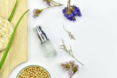 Usine de Vera d'aloès, produit de beauté naturel de soins de la peau, récipients cosmétiques de bouteille avec les feuilles de fi Photo stock