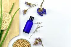 Usine de Vera d'aloès, produit de beauté naturel de soins de la peau, récipients cosmétiques de bouteille avec les feuilles de fi Images stock