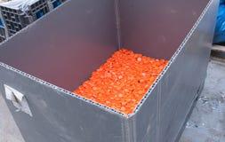 Usine en plastique de recyclage des déchets Photographie stock libre de droits