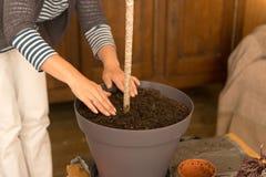 Usine replaçante de jardinage à la maison de maison Photographie stock