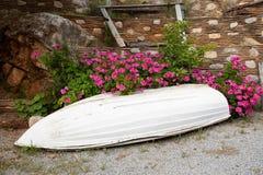 Usine rose de peltatum de pélargonium également connue sous le nom de géranium fleurissant dans le jardin d'été dans le village g photos libres de droits