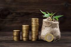 Usine s'élevant dans le sac de pièces de monnaie pour l'argent Photographie stock libre de droits