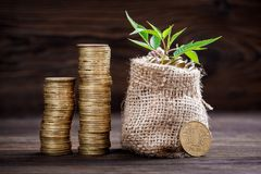 Usine s'élevant dans le sac de pièces de monnaie pour l'argent Image libre de droits