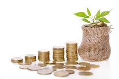 Usine s'élevant dans le sac de pièces de monnaie pour l'argent Images stock