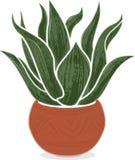 Usine stylisée d'agave dans le pot mexicain de terre cuite Image stock