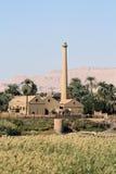 Usine sur le côté occidental du fleuve le Nil Image libre de droits