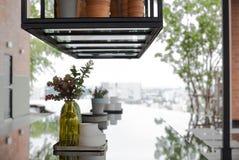 Usines à la maison modernes de maison de décor dans des bouteilles en verre jaunes Photos stock