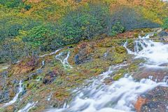 Usines à la rive en automne Photographie stock libre de droits