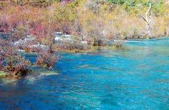 Usines à la rive en automne Photos libres de droits