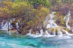 Usines à la rive en automne Image stock
