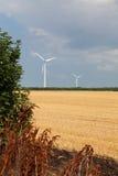 Usines d'énergie éolienne en été de la Bulgarie de région de Dobrudja Photographie stock libre de droits