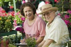 Usines de achat de couples dans la pépinière Images libres de droits