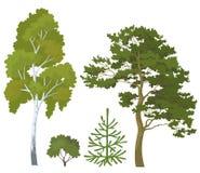 Usines de forêt réglées Photographie stock libre de droits
