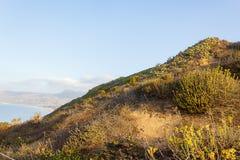 Usines de Hillside sur le grès donnant sur l'océan pacifique images libres de droits