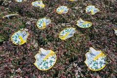 Usines de sempervirens d'Iberis à la jardinerie de De Bosrand dans Wassenaar, Pays-Bas Photographie stock