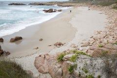 Usines et roches sur la plage de point de Forcados ; Costa de la Muerte ; GA Photographie stock libre de droits