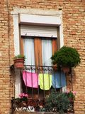 Usines et vêtements dans le balcon photographie stock libre de droits