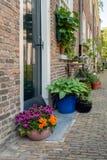 Usines mises en pot fleurissantes colorées dans un vieux beguinage néerlandais photos stock