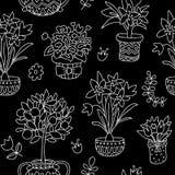 Usines sans couture de griffonnage de modèle dans des pots, fond floral Photos libres de droits