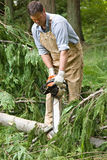 Using chainsaw. Attractive man using a chainsaw to cut limbs from fallen cedar tree royalty free stock photos