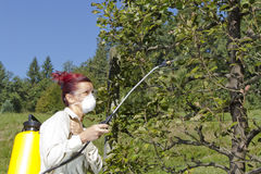 Using  chemicals in the garden Stock Image