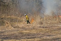 Using the Drip Torch to Start a Controlled Burn. In Spring Valley Nature Center in Schaumburg, Illinois royalty free stock images