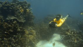 Using sea scooters in Australian waters. A slow motion scenic shot of two scuba divers with their sea scooters stock video footage