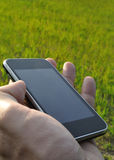 Using a smartphone. Into the nature Stock Photography