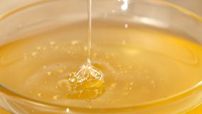 Using spoon for honey in bowl, pick it up, close. Honey in bowl, spoon for honey for it, pick it up, close up stock video