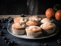 Using sugar to decorate fresh baked muffins or cupecakes. Image shows how to decorate blueberry muffins with powdered sugar; wooden table is decorated with some Stock Photos