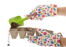 Using Trowel to put Soil into Compost. Gardener wearing colorful flower patterned gardening gloves is using a green shovel to place soil from a silver pail into royalty free stock photo