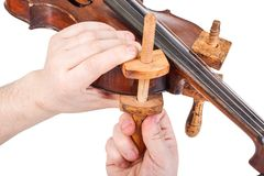 Using the wooden clamps. On violin body - close view stock images