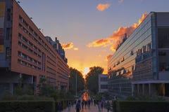 USNW sunset Royalty Free Stock Images