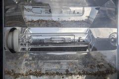 Uso artificial tubular do dispositivo elétrico de iluminação para interno e exterior Sujeira que dispersa sob a ampola alongada e imagens de stock royalty free