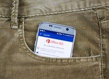 Uso del androide de Microsoft Office 365 imagenes de archivo
