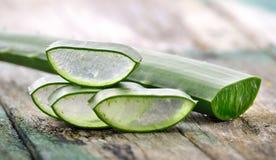 Uso di Vera dell'aloe in stazione termale per cura di pelle Fotografie Stock Libere da Diritti