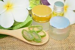 Uso di Vera dell'aloe in stazione termale per cura di pelle Immagine Stock