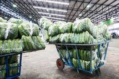 Uso do carro para o mercado vegetal por atacado Imagem de Stock Royalty Free