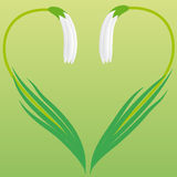 Coração de flores do snowdrop Fotografia de Stock