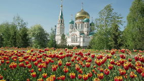 Uspensky Cathedral in Omsk on background of beautiful tulips. Uspensky Cathedral in Omsk on the background of beautiful tulips stock footage