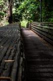 Uspokajać czujący na to długo most natura Zdjęcia Royalty Free