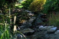 Uspokajać rzekę Zdjęcie Royalty Free