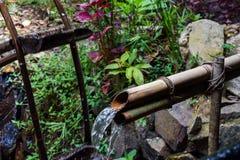 Uspokajać Wodnego strumienia bieg Przez bambus drymby fotografia royalty free